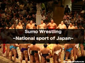 sumo wrestling.004