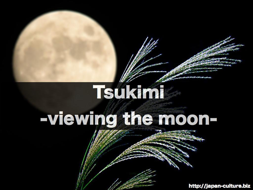 tsukimi.048